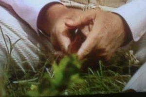 Les mains de François Mitterrand